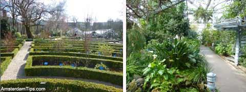 hortus botanical garden - Amsterdam Garden