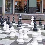 free max euwe chess museum amsterdam