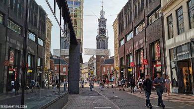 dutch shops