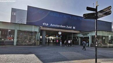 expat steps amsterdam