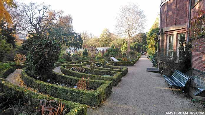hortus botanical gardens amsterdam