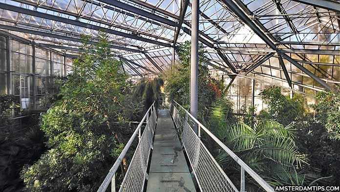 hortus botanicus greenhouse amsterdam